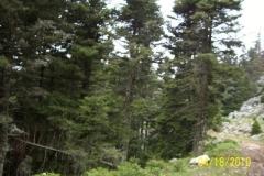 18-04-2010014